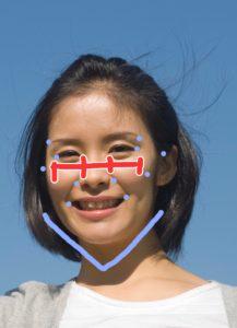 顔骨格診断